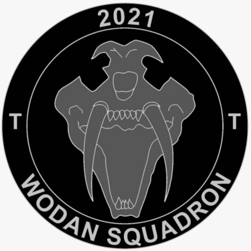 Desolate Squadron logo